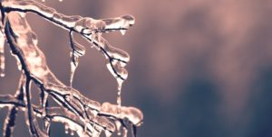 tips to avoid frozen pipes this winter
